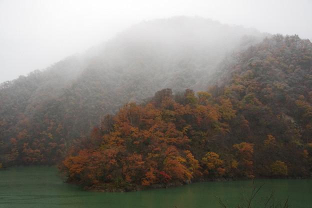 紅葉と雪とダム湖2