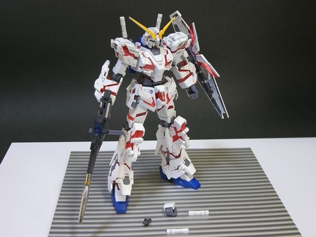 15ユニコーンDM HG34 11-05