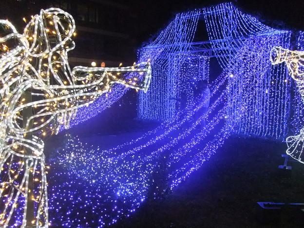 ひろしまドリミネーション2011