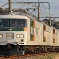 185系200番台オオB6編成 快速早春成田初詣号