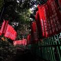 写真: 山王稲荷神社の幟