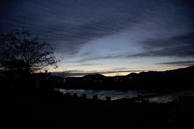 鏡川の朝.3