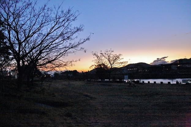 鏡川の朝.1