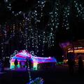 Photos: 光りの祭典5-4