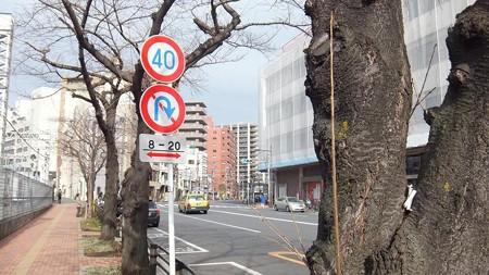 駐車禁止無し看板+風景