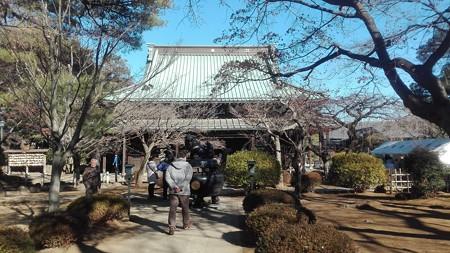 豪徳寺 仏堂
