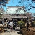 写真: 豪徳寺 仏堂