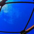 写真: 歪な額縁、青い塗料