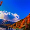 写真: 秋の街灯