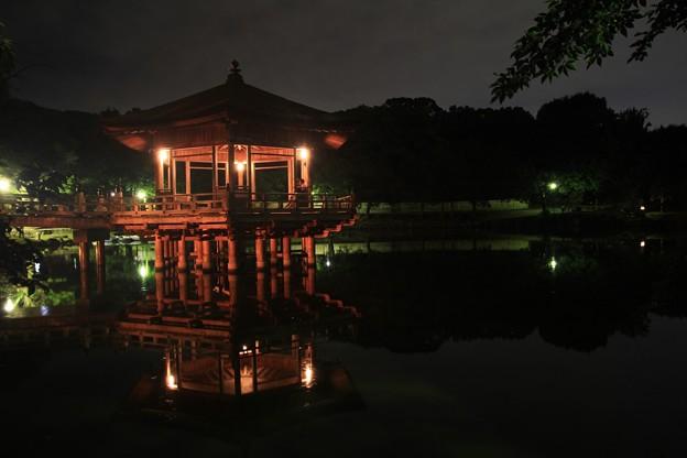 夜の浮見堂