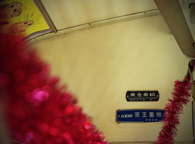 写真: z1M0A6815
