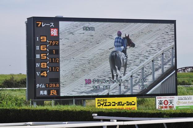 写真: 笠松11