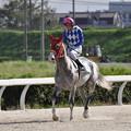写真: 返し馬1