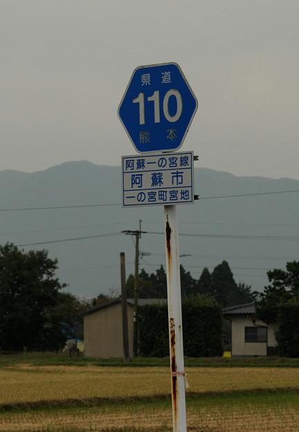 県道110号