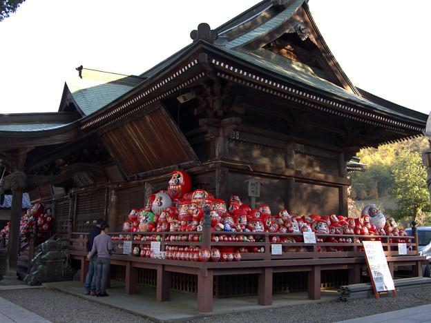 写真: 晩秋のだるま寺