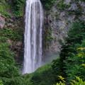 写真: 平湯大滝