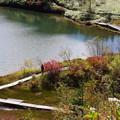 写真: 弓池