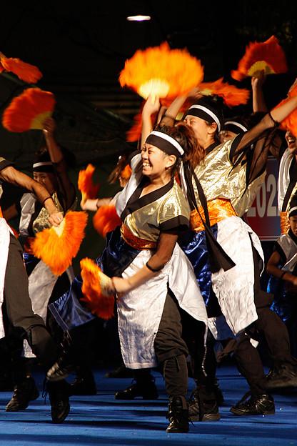 パワフル_10 - 良い世さ来い2010 新横黒船祭