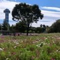 木曽三川公園センター (2)