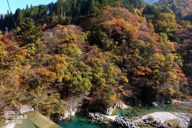 写真: 付知峡・宮の上橋付近 (1)