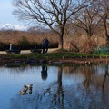 写真: 木曽川水園 (20)伊吹山