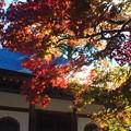 写真: 永源寺2
