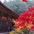 写真: 本堂の秋