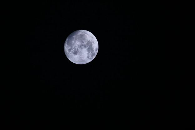 写真: 仲秋の名月