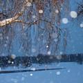 ロヴァニエミに降る雪