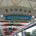 JRA中京1