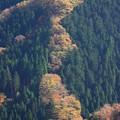 写真: ナメゴ谷1