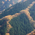 写真: ナメゴ谷2