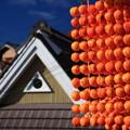 串柿のカーテン