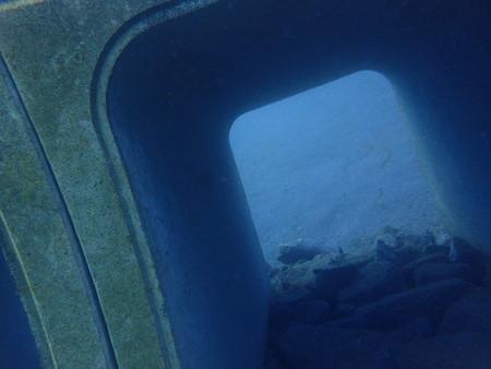 さて、中をくぐってみましょうか(数年後はきっと海藻とかが生えて通れなくなりますからね)