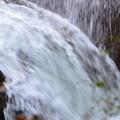 写真: ザ・滝