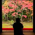 Photos: 紅葉を撮る