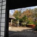 Photos: 岩手県立博物館 15