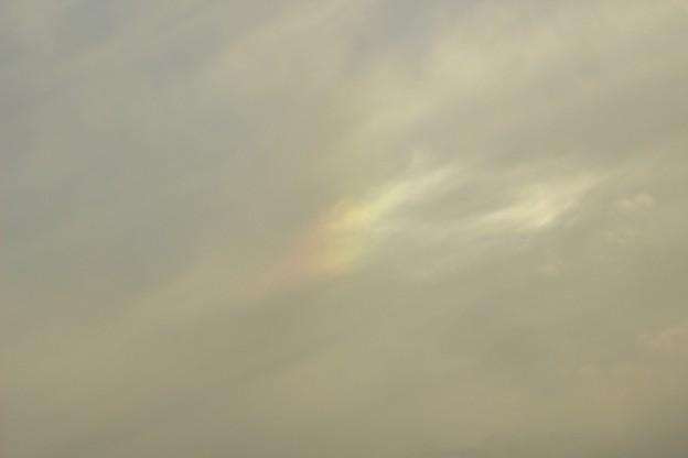 ほんのり彩雲~♪