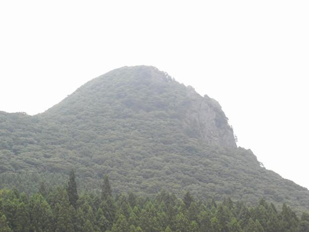 写真: ゴリラ岩