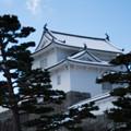 雪景色の霞ヶ城-06082