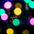 道の駅クリスマス-06061