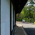 写真: 民家園初秋-02194