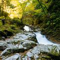 写真: いわき夏井川渓谷-19