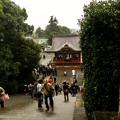 鎌倉 (29)