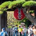 写真: 鎌倉2-44