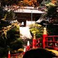 秋の雲巌寺