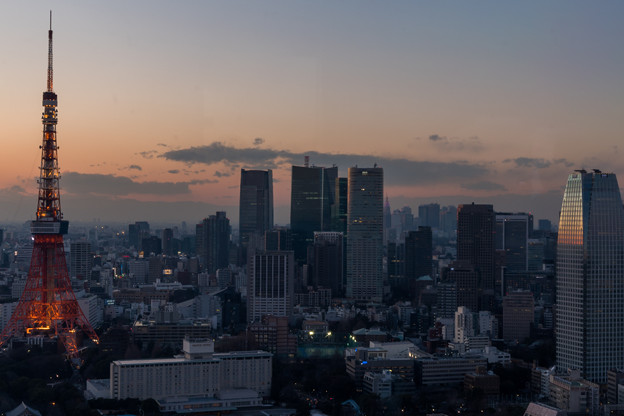 Photos: 東京タワー2