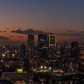 Photos: 東京タワー4
