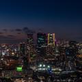 Photos: 東京タワー6