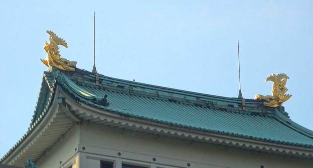 Photos: 秋の名古屋城 - 15